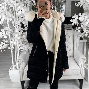 COLETTE— in Black